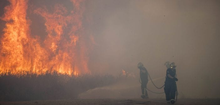 Fire fighters try to put out a forest fire near Torre Nueva beach near La Linea de la Concepcion in the southern Spanish region of Cadiz, Andalusia, on July 12, 2016. / AFP PHOTO / Marcos Moreno