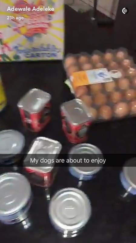 """""""Mes chiens mangent mieux que certains d'entre vous"""", déclare le frère de Davido"""