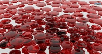 1370690784_blood-cells-10521-1366×768