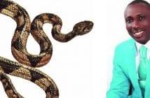 pasteur-serpent