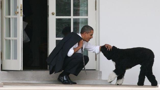 010916-national-obama-bo