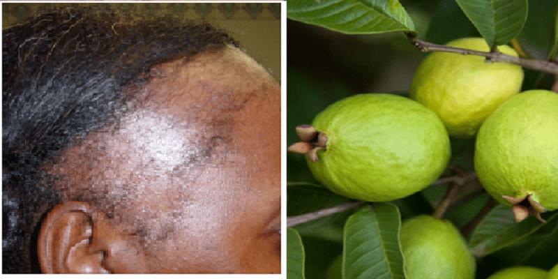 Traitement naturel pousse cheveux