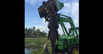 648x415_fils-lee-lightsey-pose-devant-alligator-geant-abattu-pere