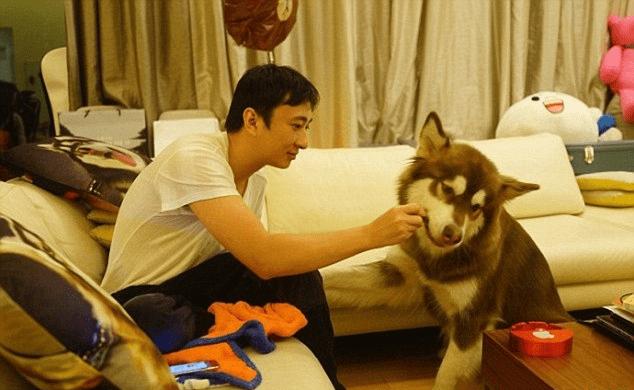 Chine: Il achète 8 iPhones 7s pour son chien (PHOTOS)