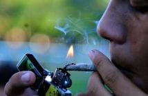 l-etat-d-indiana-pourrait-creer-la-premiere-eglise-du-cannabis_5312365