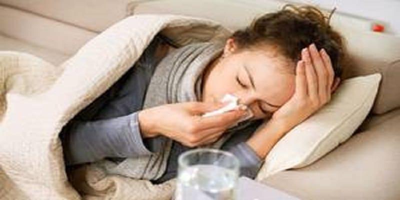 les scientifiques ont d couvert l 39 origine de notre rhume les dromadaires. Black Bedroom Furniture Sets. Home Design Ideas