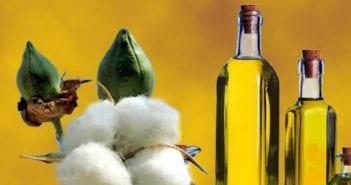 huile de coton
