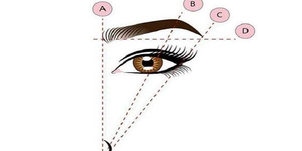 mesdames voici comment piler vos sourcils selon la morphologie de votre visage afrikmag. Black Bedroom Furniture Sets. Home Design Ideas