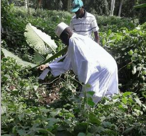 Les dernières nouvelles de Yahya Jammeh en Guinée Équatoriale (photos)