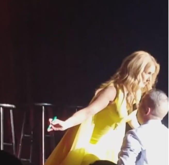 Céline Dion: son micro entre ses s*ins attire irrésistiblement un fan...photo