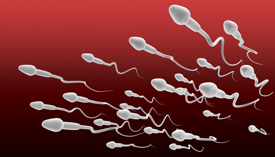 spermaaaa-1140×652