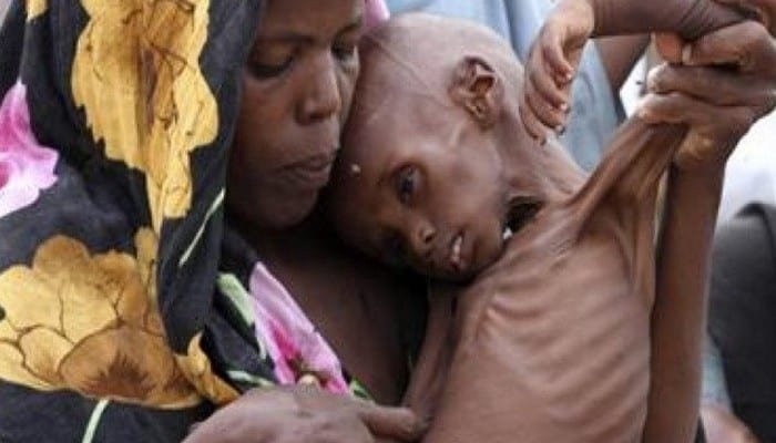 2302669-la-fao-s-insurge-contre-la-famine-dans-la-corne-de-l-afrique
