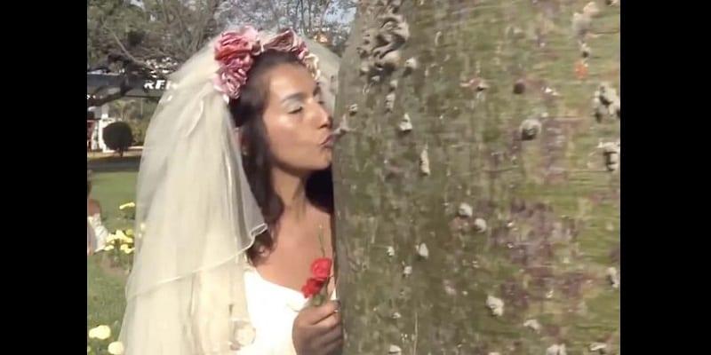 Pérou-Insolite: elles se marient à des arbres pour une raison incroyable (vidéo)