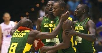 Lions basket