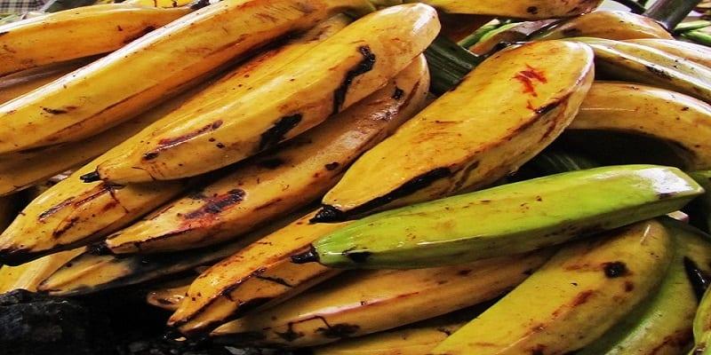 5 plats que vous pouvez faire avec la banane plantain en - Cuisiner des bananes plantain ...