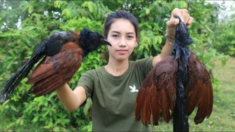 Cambodge: Un couple arrêté pour avoir mangé des animaux en voie de disparition