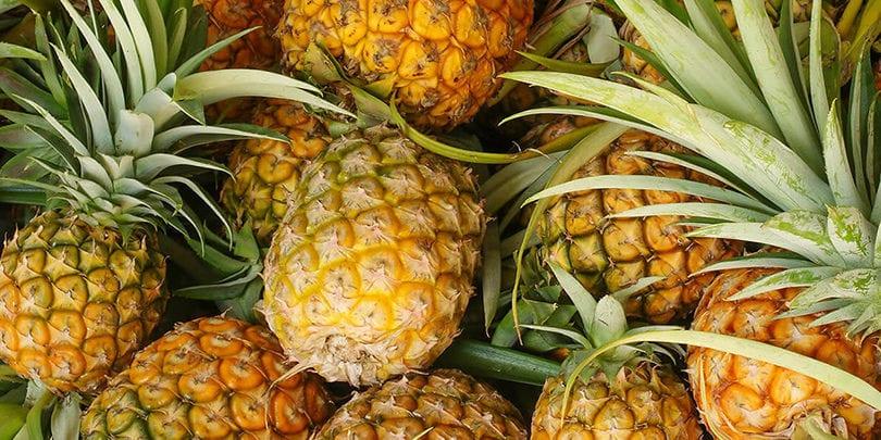 ananas-810×405