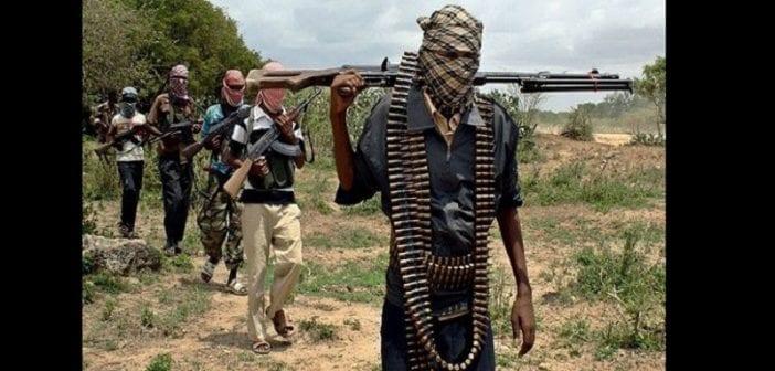 Nigeria: l'armée découvre un nouveau groupe terroriste dans le nord-est