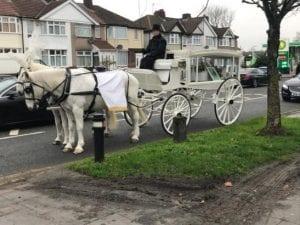 Elle dépense plus de 4000 £ pour les funérailles de son chien (photos)