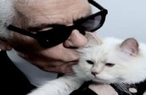 Karl et sa chatte