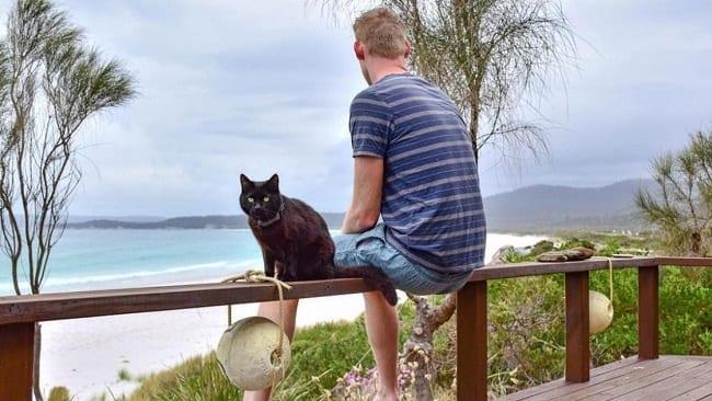 Un homme quitte son boulot, vend tout pour voyager avec sa chatte