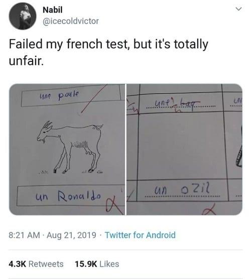 Un anglophone échoue à son examen de français après avoir nommé Ronaldo comme étant la chèvre