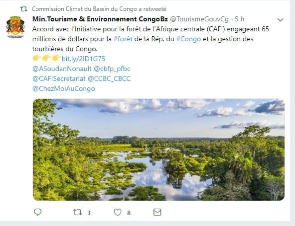 Bassin du Congo : 60 millions de dollars pour la forêt du Congo et la gestion des tourbières