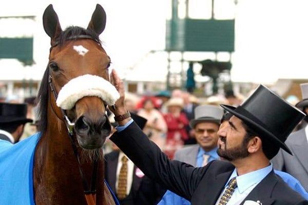 sheikh-mohammed-bin-rashid-al-maktoum-horse