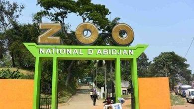 zoo-abidjan