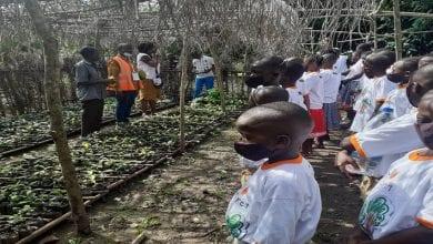 enfants encadreurs cacao