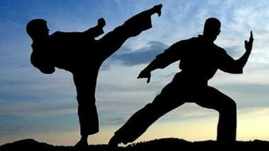 karate-technique