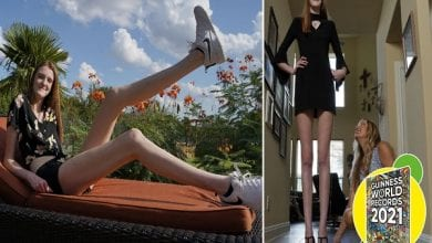 woman-with-longest-legs-lying-on-a-chair-and-being-measured_tcm25-633441