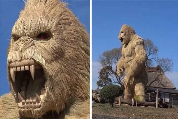 Villagers-build-giant-gorilla-to-scare-of-Covid-19-lailasnews-4-758×415