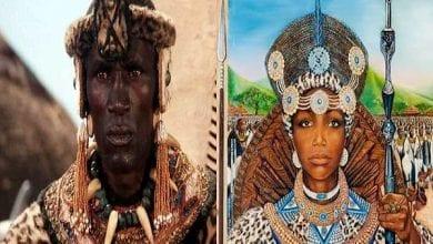 Image-from-Shaka-Zula-movie-War-Movies-696×450