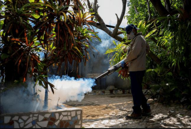 China: Erradicación sistemática de la malaria en el país