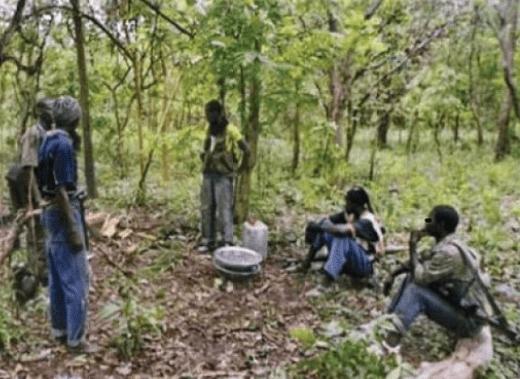 Côte d'Ivoire/ Des hommes lourdement armés se cachent dans une forêt